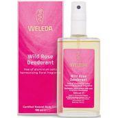 Weleda Wild Rose Deodorant - (100ml)